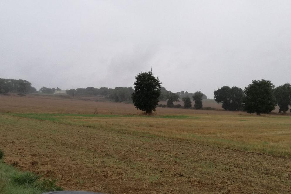 Terres agricoles Morbihan (56)  176279.28 € FAI - Photo