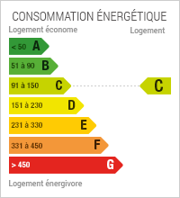 Diagnostic de performance Energétique du bien : C